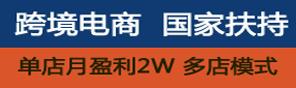 跨境电商,国家扶持,单店月盈利2W